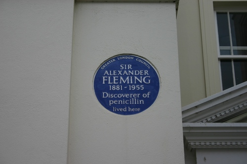Fleming´s house in London